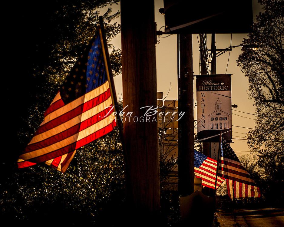 November/8/13:   American Flags on Main St., Madison, VA for Veteran's Day.
