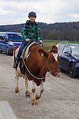 The farm that lets visitors saddle up on COWS rather than horses