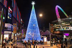 © Licensed to London News Pictures. 20/11/2019. London, UK. Light installation titled The Hopeful Tree is London's tallest-ever LED Christmas tree illuminated with over 100,000 lights. The tree is showing as part of Winterfest 2019 at Wembley Park. Photo credit: Ray Tang/LNP