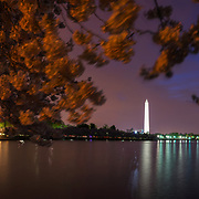 The sun begins to rise over a cherry blossom filled Tidal Basin in the early morning hours of Monday, April 13, 2015 in Washington, D.C.