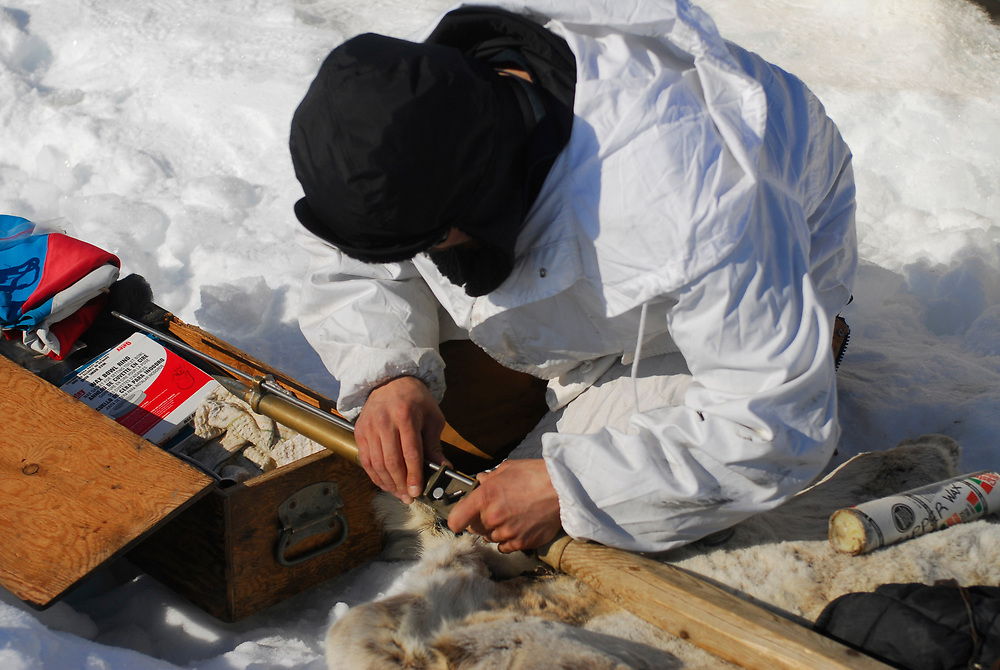Alaska, Barrow. Whaler at whaling camp on the edge of the shorefast ice of the frozen Arctic ocean. Hopson Crew whaling camp. The crew set camp again after pulling out camp to safer ice due to ice floats and water current. Arming the harpoon with the bomb. (Model Release)