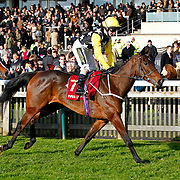 Pure Excellence and Joe Fanning winning the 1.55 race
