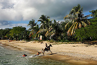 The little town of Esperanza on Vieques' south shore, on Wednesday, November 18, 2008.
