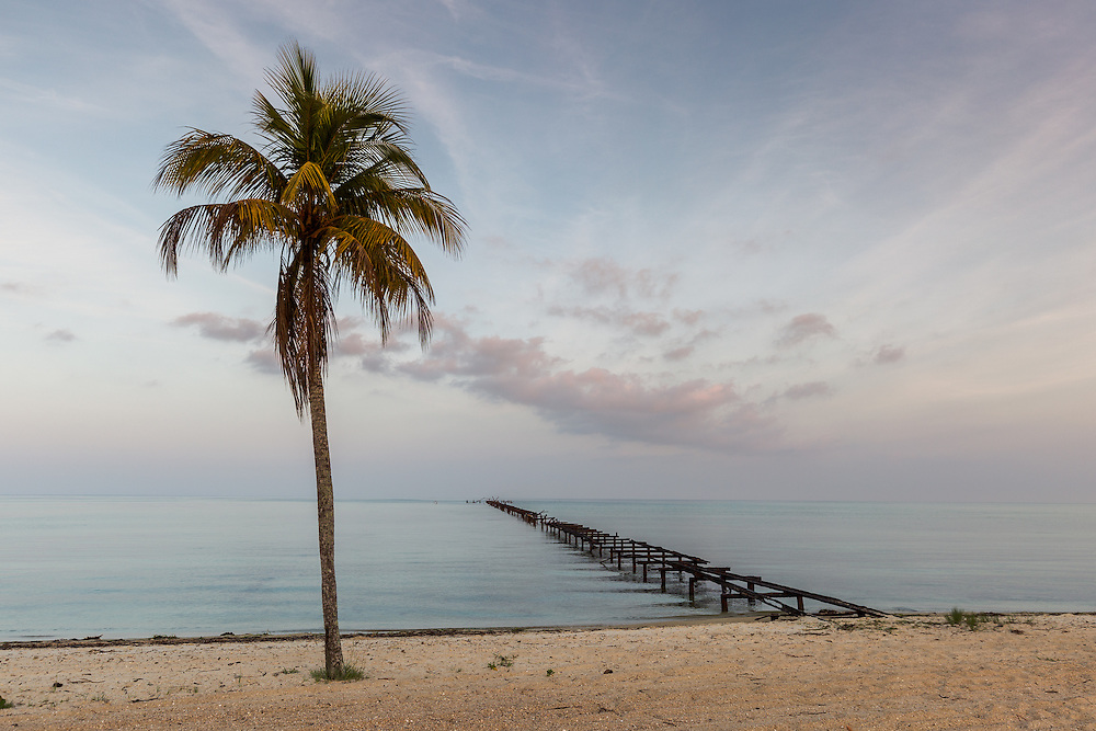 Soft light illuminates an old pier, clouds and a solo coconut palm on the beach of the Isle of Youth, Cuba