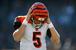 OAKLAND, CA - NOVEMBER 17: Quarterback Ryan Finley #5 of the Cincinnati Bengals holds his helmet during warmups before the game against the Oakland Raiders at RingCentral Coliseum on November 17, 2019 in Oakland, California. The Oakland Raiders defeated the Cincinnati Bengals 17-10. (Photo by Jason O. Watson/Getty Images) *** Local Caption *** Ryan Finley