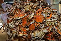 UMBWMC 2018 Crab Feast