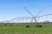 Crops - Irrigation