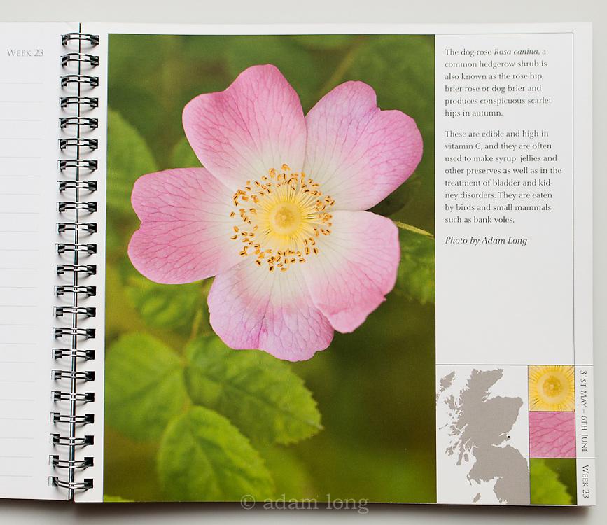 John Muir Trust Yearbook
