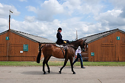 © Licensed to London News Pictures.14/07/15<br /> Harrogate, UK. <br /> <br /> A woman rides sidesaddle on her way to the main arena to compete on the opening day of the Great Yorkshire Show.  <br /> <br /> England's premier agricultural show opened it's gates today for the start of three days of showcasing the best in British farming and the countryside.<br /> <br /> The event, which attracts over 130,000 visitors each year displays the cream of the country's livestock and offers numerous displays and events giving the chance for visitors to see many different countryside activities.<br /> <br /> Photo credit : Ian Forsyth/LNP
