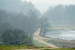 © Licensed to London News Pictures. 02/04/2014. Richmond, UK. A figure walks between two ponds.  Visitors to Richmond Park had low visibility today April 2nd 2013. High levels of air pollution are set to spread across England and are expected  to get worse. Photo credit : Stephen Simpson/LNP