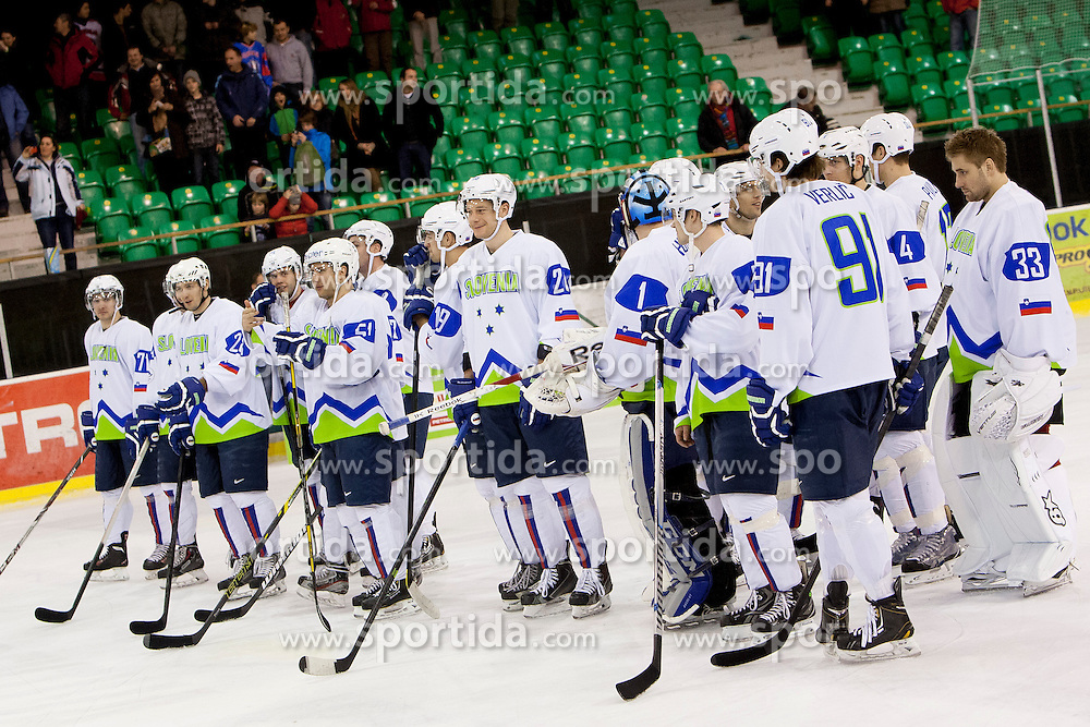 Players of Hockey team Slovenia Sochi 2014 at Dan Slovenskega Hokeja, on February 3, 2014 in Hala Tivoli, Ljubljana, Slovenia. (Photo By Urban Urbanc / Sportida.com)