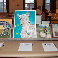 Primrose Donkey Sactuary Kick Ass Gala and Auction, October 17, 2015. Warkworth, ON