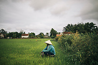 A rice farmer in her fields where US helicopters and soldiers landed on March 16, 1968 in My Lai, Vietnam.