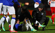 Picture by David Horn/Focus Images Ltd +44 7545 970036<br /> 25/01/2014<br /> Bryan Oviedo of Everton receives treatment for a supected broken leg during the The FA Cup match at the Lamex Stadium, Stevenage.