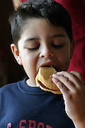 (MODEL RELEASED IMAGE). At home in San Antonio, Texas, 5-year-old Brian Fernandez polishes off a cheeseburger from the fast-food chain, Whataburger. Hungry Planet: What the World Eats (p. 275).