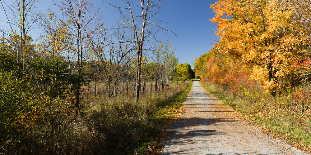 http://Duncan.co/fall-colour-on-concession-road-3