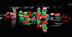 23-12-2014 NED: China Light festival, Utrecht<br /> In de Botanische Tuinen op de Uithof in Utrecht zijn tientallen lichtsculpturen te bewonderen.