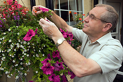 Older man watering his plants outside,