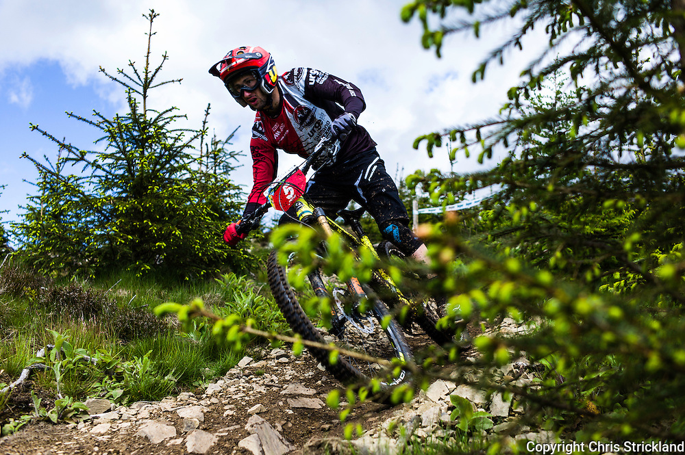 Glentress, Peebles, Scotland, UK. 31st May 2015. Florian Nicolai on the final stage at The Enduro World Series Round 3 taking place on the iconic 7Stanes trails during Tweedlove Festival.