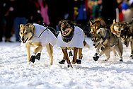 04 March 2006: Anchorage, Alaska - The team of Hans Gatt heads out at the Ceremonial Start in downtown Anchorage of the 2006 Iditarod Sled Dog Race
