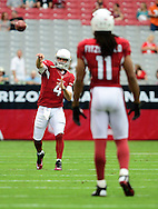 Sept. 30, 2012; Glendale, AZ, USA; Arizona Cardinals quarterback Kevin Kolb (4) and wide receiver Larry Fitzgerald (11) warm up prior to the game against the Miami Dolphins at University of Phoenix Stadium. Mandatory Credit: Jennifer Stewart-US PRESSWIRE.