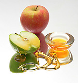 Rosh Hashana and Jewish High Holidays