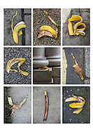 Bananas litter.