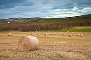 Autumn Landscape with Hay Bales