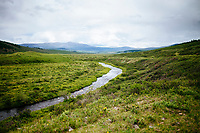 The steppes of northern Mongolia.