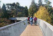 Treetop walkway to Silk Wood, National arboretum, Westonbirt arboretum, Gloucestershire, England, UK