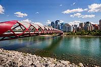 Peace Bridge & Bow River