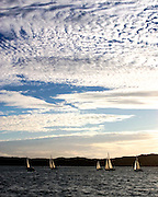 Friday night racing at Russell, Bay of Islands