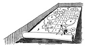 (a man rolls out a huge plan over a new garden with the plantings drawn all over it)