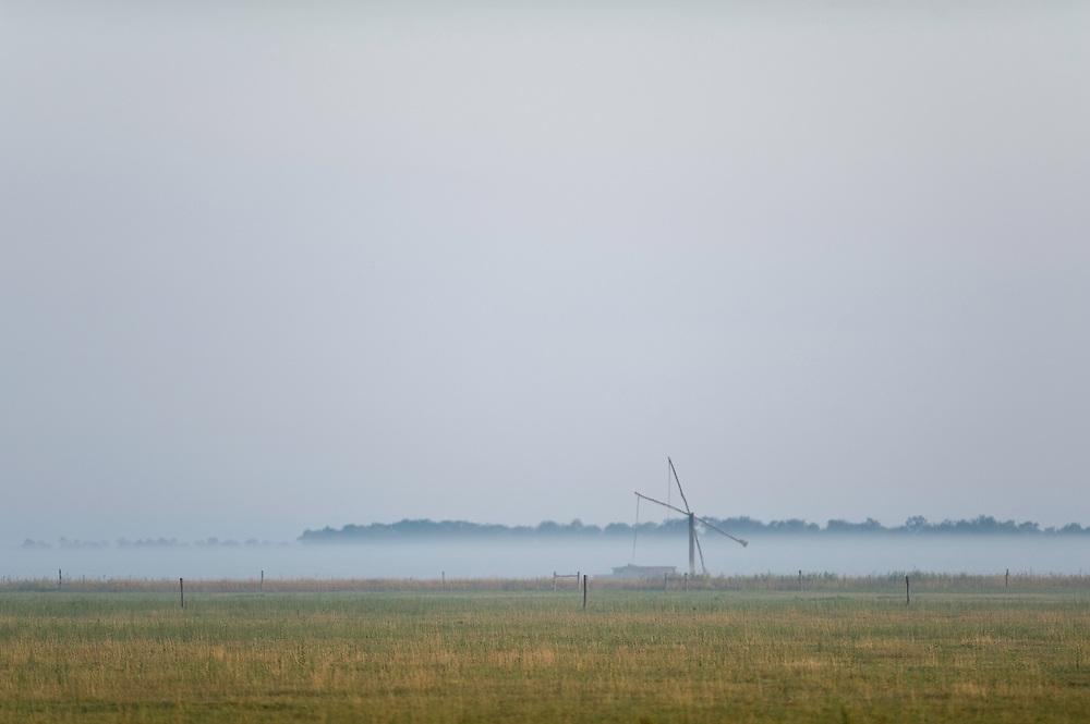 Early foggy morning landscape,  Hortobagy National Park, Hungary