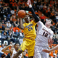 California's Jordan Mathews, left, drives to the basket on Oregon State's Drew Eubanks in the first half of an NCAA college basketball game, in Corvallis, Ore., on Saturday, Jan. 9, 2016. (AP Photo/Timothy J. Gonzalez)
