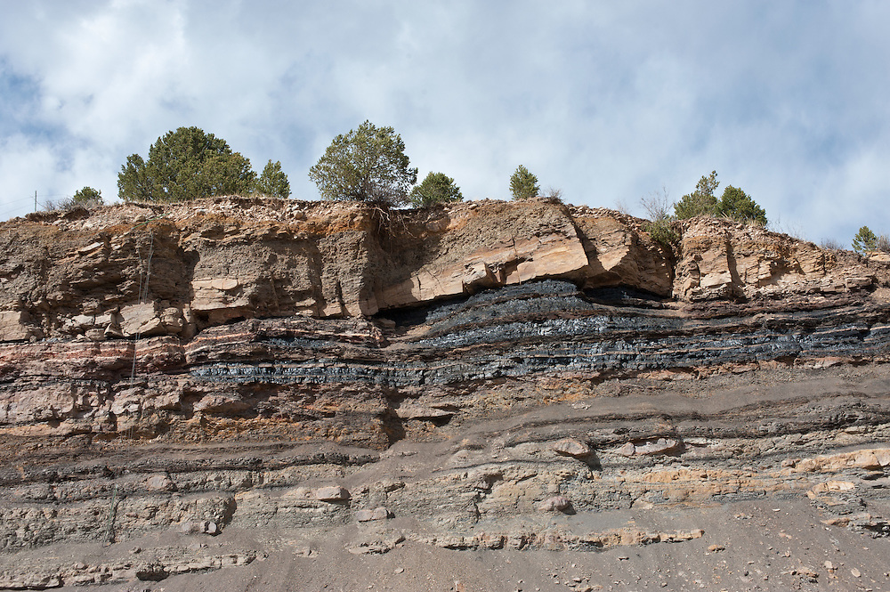 coal beds in the Late Cretaceous Vermejo Formation, near Trinidad, Colorado