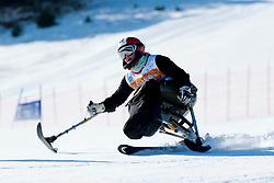 DANI Gyongyi, HUN, Giant Slalom, 2013 IPC Alpine Skiing World Championships, La Molina, Spain