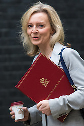 Downing Street, London, October 27th 2015.  Secretary of State for Environment, Food and Rural Affairs Liz Truss arrives at 10 Downing Street to attend the weekly cabinet meeting. /// Licencing: Paul Davey tel: 07966016296 or 02089696875 paul@pauldaveycreative.co.uk www.pauldaveycreative.co.uk