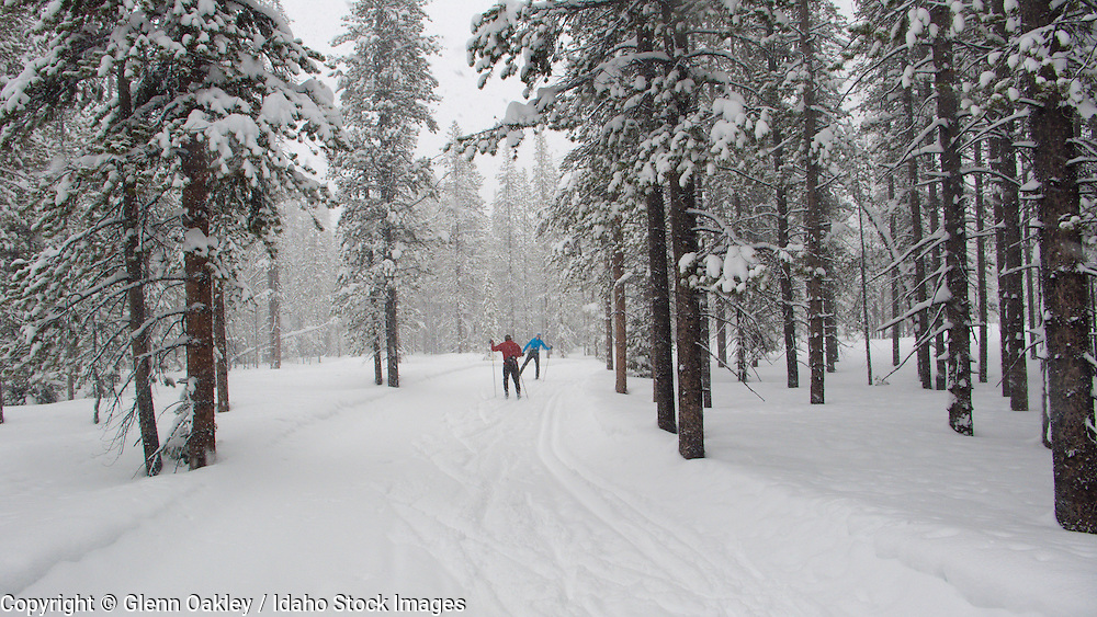 Nordic skiers, Sun Valley, Idaho