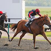 Scottish Glen and Jim Crowley winning the 5.30 race