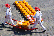 Porters / carriers carrying wheels / rounds of Gouda cheese by stretcher at Waagplein Square, Alkmaar cheese market, The Netherlands