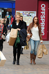 © Licensed to London News Pictures. 29/11/2013<br /> Black Friday shoppers in Bromley High Street,Greater London today (29,11,2013)<br />  Photo credit :Grant Falvey/LNP