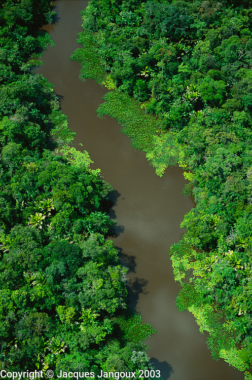 Aerial of river in floodplain forest in Marajo Island, Amazon estuary, Brazil.