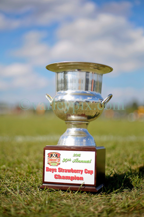 10 April 2016. Hammond, Louisiana.<br /> South Tangi Youth Soccer Association (STYSA), Chappapeela Sports Complex, 30th Annual Strawberry Cup.  <br /> Championship medals and cups.<br /> Photo&copy;; Charlie Varley/varleypix.com