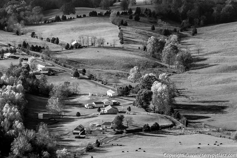 Shenandoah National Park black and white