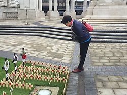 People look at the remembrance garden outside Belfast City Hall on Armistice Day.