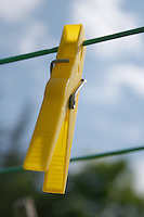 Yellow clothes peg on washing line