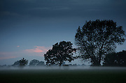 Summer Mist at Dusk - Isle of Funen, South Denmark
