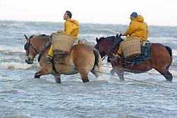 Garnaalvissers te paard<br />Oostduinkerke 2003<br />Photo © Dirk Caremans