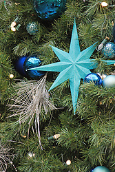 Christmas ornaments on an evergreen tree